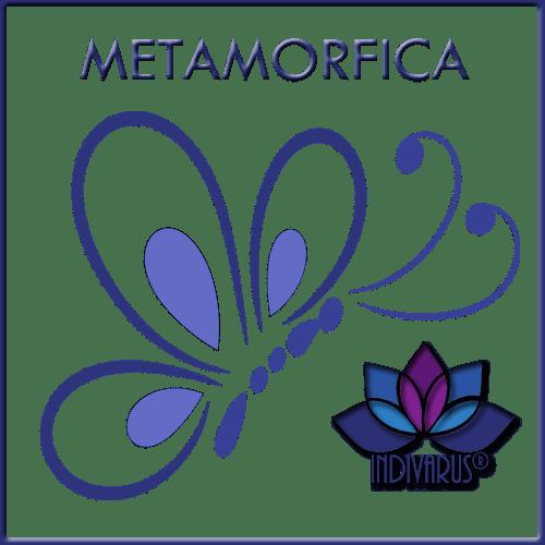 Técnica metamórfica